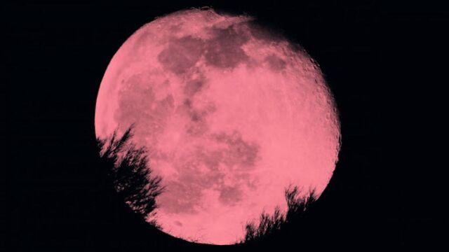 La superluna rosa: tutte le notti in cui vederla nel 2021