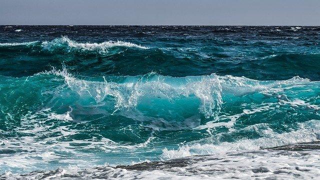 8 giugno 2021: oggi è la Giornata Mondiale dell'Oceano